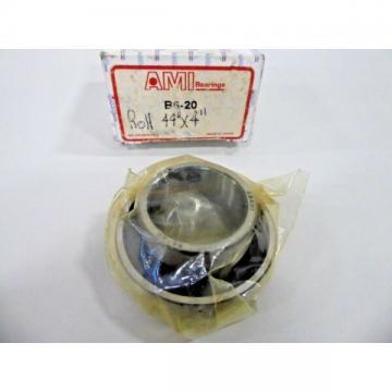 Asahi/Ami B6-20 Bore Bearing Insert